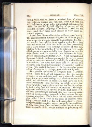 Image of Darwin-F377-1860-00240