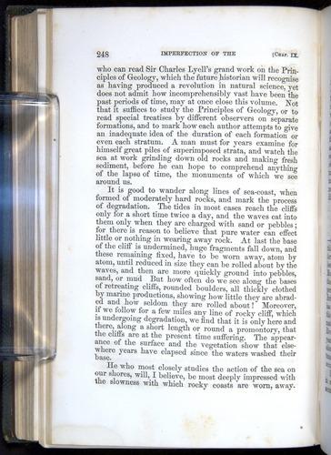 Image of Darwin-F377-1860-00248