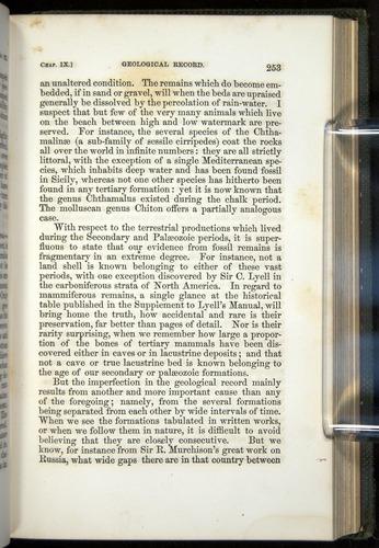 Image of Darwin-F377-1860-00253