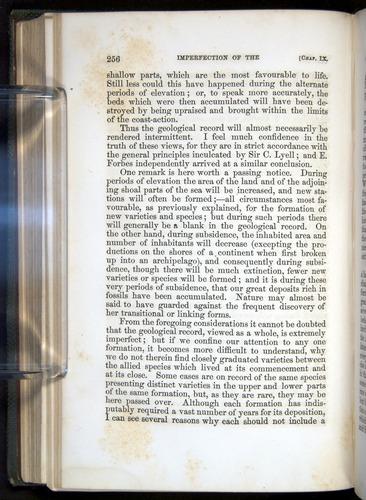 Image of Darwin-F377-1860-00256