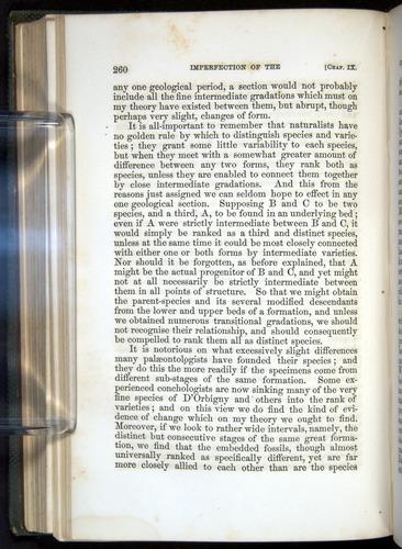 Image of Darwin-F377-1860-00260