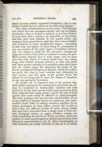 Image of Darwin-F377-1860-00261