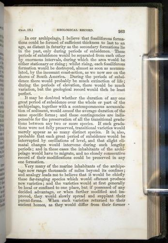 Image of Darwin-F377-1860-00263