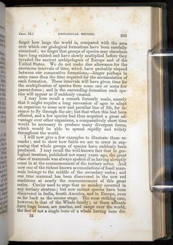 Image of Darwin-F377-1860-00265