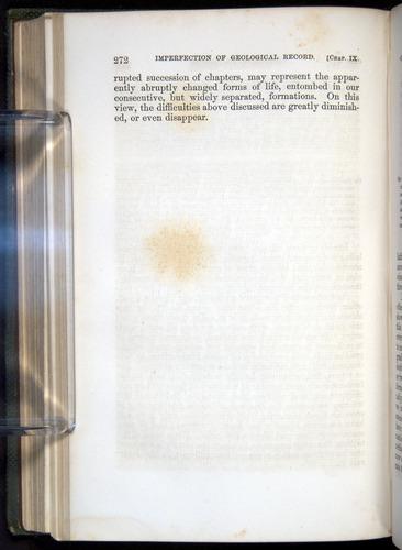 Image of Darwin-F377-1860-00272