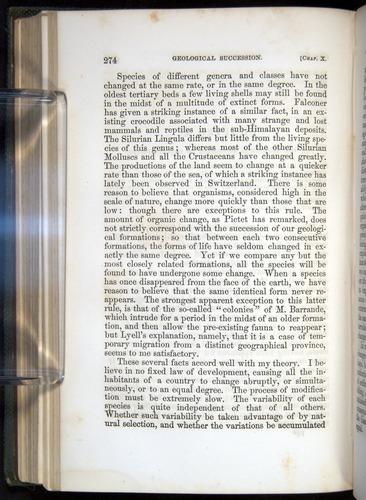 Image of Darwin-F377-1860-00274