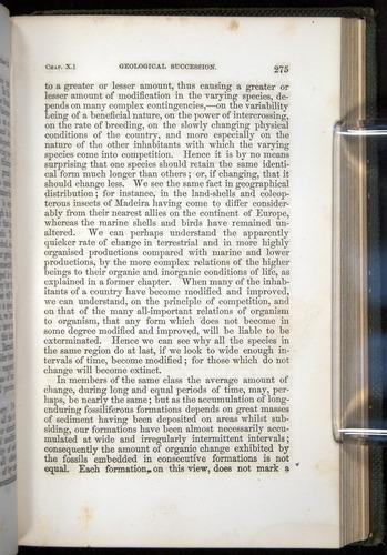 Image of Darwin-F377-1860-00275