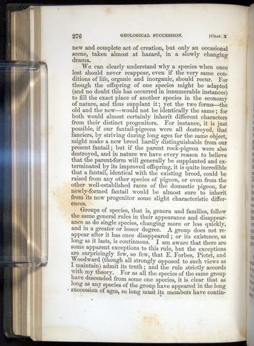 Image of Darwin-F377-1860-00276