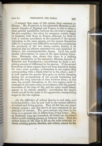 Image of Darwin-F377-1860-00287