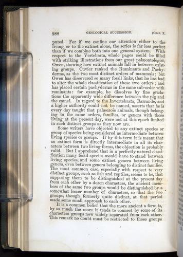 Image of Darwin-F377-1860-00288