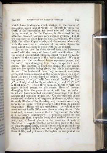 Image of Darwin-F377-1860-00289