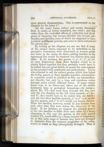 Image of Darwin-F377-1860-00290