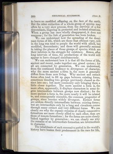 Image of Darwin-F377-1860-00300