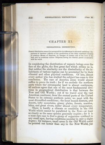 Image of Darwin-F377-1860-00302