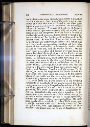 Image of Darwin-F377-1860-00304