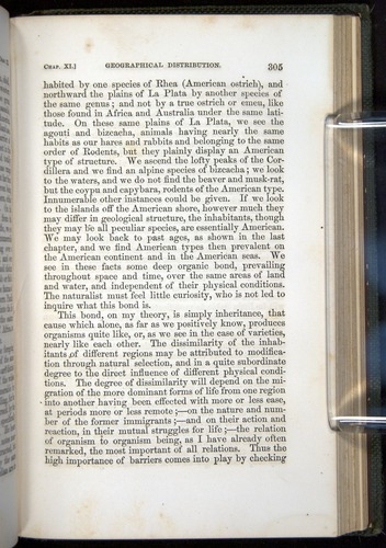 Image of Darwin-F377-1860-00305