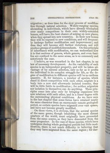 Image of Darwin-F377-1860-00306