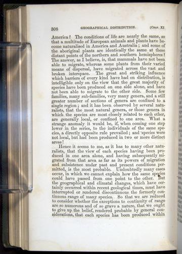 Image of Darwin-F377-1860-00308
