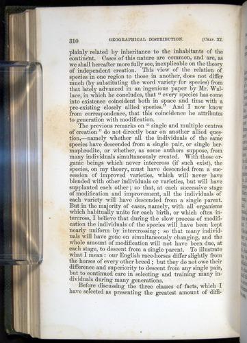 Image of Darwin-F377-1860-00310