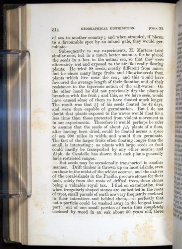 Image of Darwin-F377-1860-00314