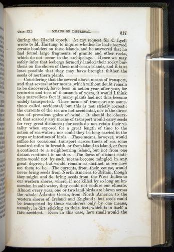 Image of Darwin-F377-1860-00317