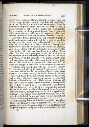 Image of Darwin-F377-1860-00321