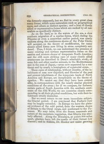 Image of Darwin-F377-1860-00324