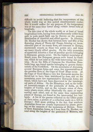 Image of Darwin-F377-1860-00326