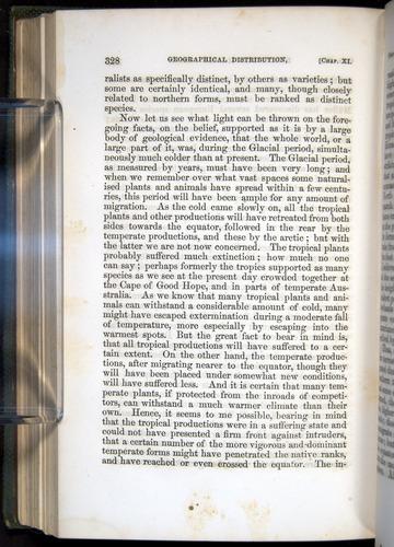Image of Darwin-F377-1860-00328