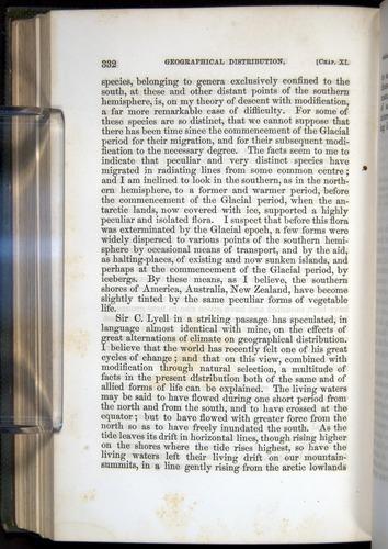 Image of Darwin-F377-1860-00332