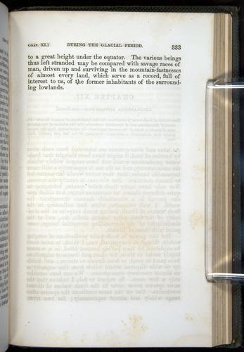 Image of Darwin-F377-1860-00333