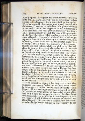 Image of Darwin-F377-1860-00336