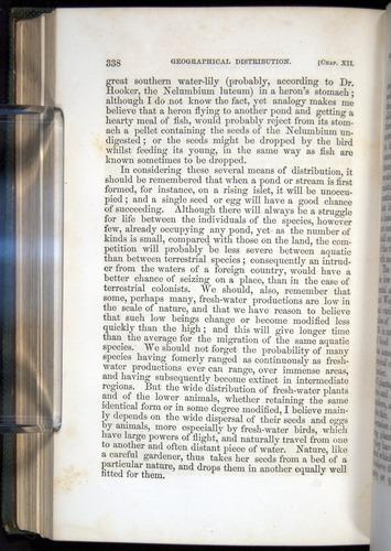 Image of Darwin-F377-1860-00338