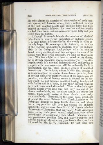 Image of Darwin-F377-1860-00340