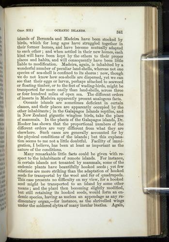 Image of Darwin-F377-1860-00341