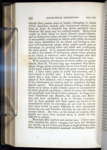Image of Darwin-F377-1860-00342