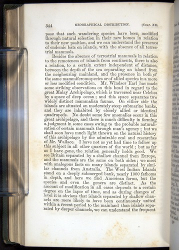Image of Darwin-F377-1860-00344
