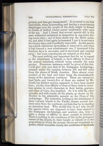 Image of Darwin-F377-1860-00346