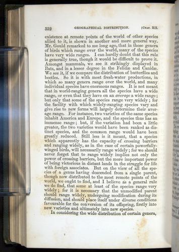 Image of Darwin-F377-1860-00352