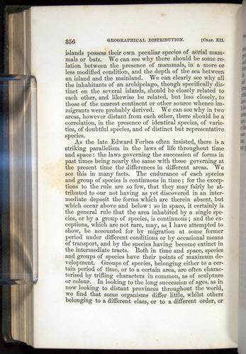 Image of Darwin-F377-1860-00356