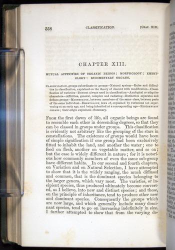 Image of Darwin-F377-1860-00358