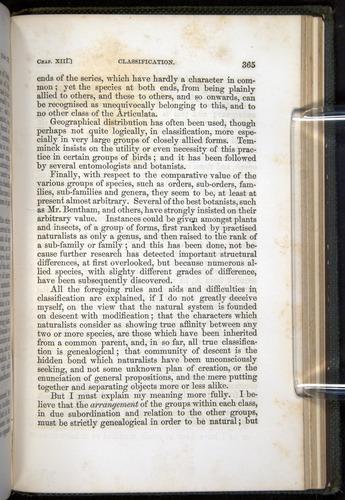 Image of Darwin-F377-1860-00365
