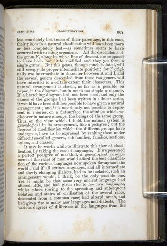 Image of Darwin-F377-1860-00367