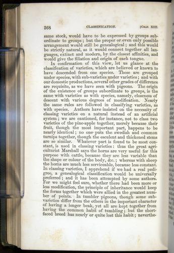 Image of Darwin-F377-1860-00368