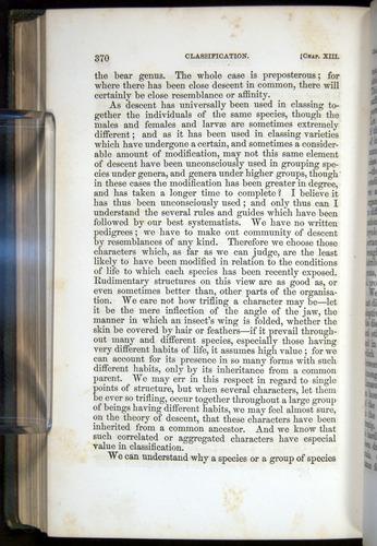 Image of Darwin-F377-1860-00370