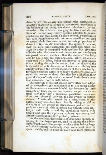 Image of Darwin-F377-1860-00372