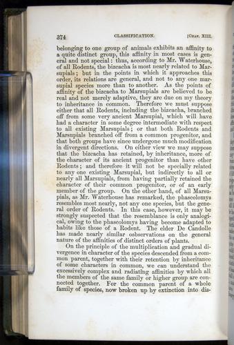 Image of Darwin-F377-1860-00374