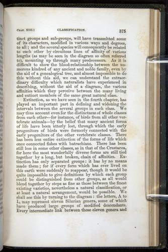 Image of Darwin-F377-1860-00375