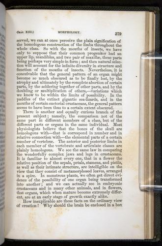 Image of Darwin-F377-1860-00379