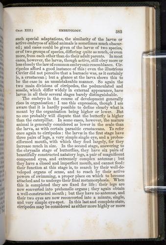 Image of Darwin-F377-1860-00383
